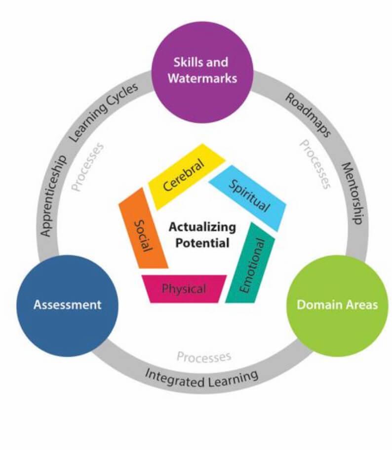 5 Areas Of Development