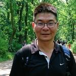 鎮澤 楊(Andrew Yang)